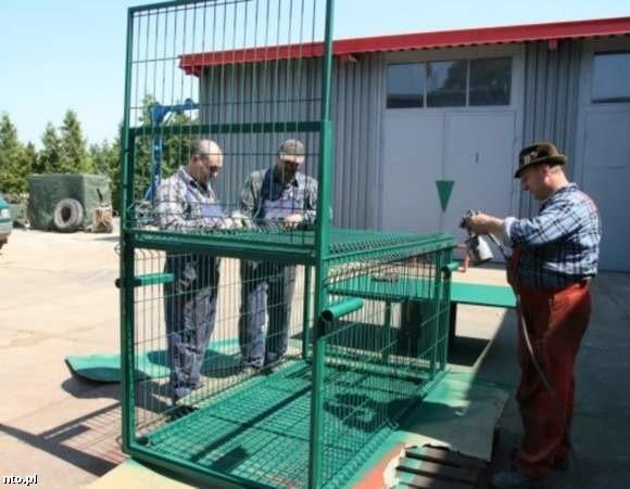 Klatka kosztowała niecałe 5 tysięcy złotych i wykonana została zgodnie z sugestiami specjalistów z opolskiego zoo i myśliwych.