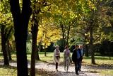 Słoneczny spacer po Muzeum Wsi Lubelskiej. Wczesna jesień zachwyca w skansenie! Zobacz zdjęcia