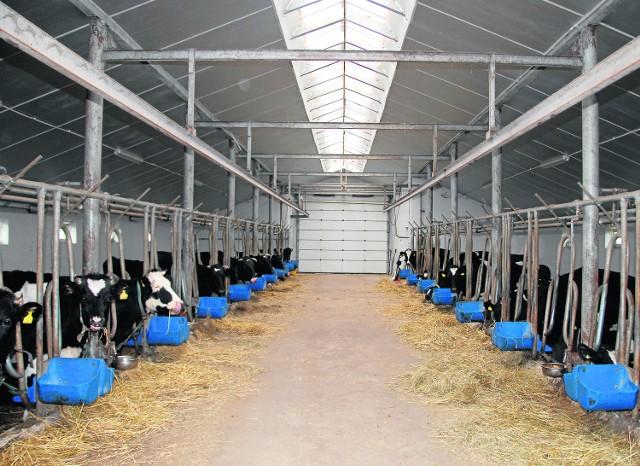 Mamy mniej krów, ale dają one więcej mlekaGospodarstwa zajmujące się produkcją mleka szybko się zmieniają. Powiększają stada, pracują też nad wydajnością produkcji.