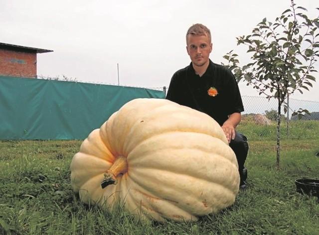 Przemek Budzisz z Władysławowa wyhodował okazałą dynię, która ważyła 152 kilogramy. To dynia olbrzymia, Atlantic Giant