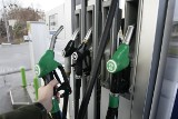 Ceny paliw poszły w górę. Znowu w Szczecinie benzyna Pb95 jest najdroższa