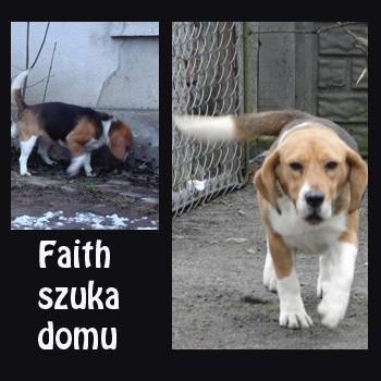 Faith ma około czterech lat