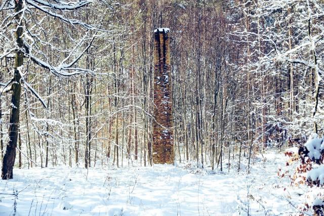 Pozostałości dawnych kopalni w Zielonym Lesie.