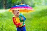Pogoda w Poznaniu i Wielkopolsce. Prognoza pogody na pierwszy tydzień lipca