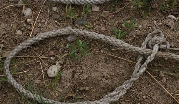 Zwyrodnialec w lesie w gminie Boćki powiesił własnego psa.