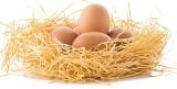 Andrzej Kruszewicz: Jajo jest symbolem świąt, bo z czegoś, co wydaje się martwe, budzi się życie