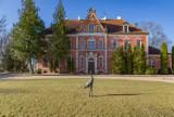 Pałac na Pomorzu na sprzedaż! Cena wywoławcza zabytkowego budynku w Leźnie to 16 mln zł. Jego właścicielem jest Uniwersytet Gdański