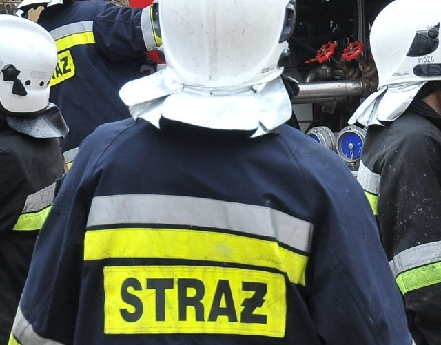 Nietypową akcję przeprowadzili w środę, 9 maja, rawscy strażacy. Po godz. 14 otrzymali informację, że na chodniku ulicy Tadeusza Kościuszki pojawił się wąż.