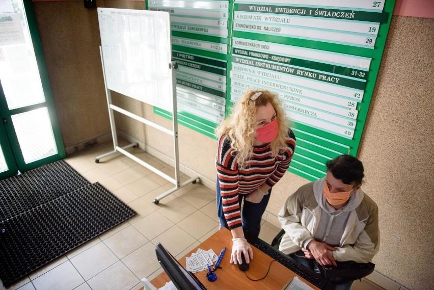 rejestracja w urzędzie pracy odbywa się na dwa sposoby -...