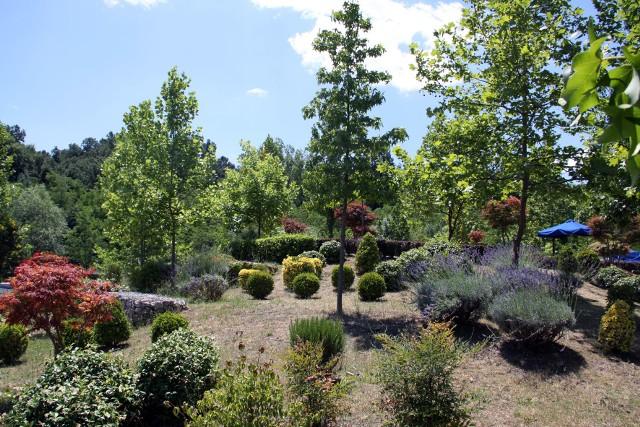 Ogród Pamiętajmy, że w prostym, amatorskim ogrodzie, powinno znajdować się niewiele roślin. Nie wprowadzajmy chaosu do ogrodu, a raczej ograniczmy liczbę drzew i krzewów tak, by nie szkodziły sobie nawzajem.