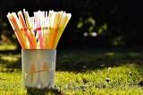 Plastikowe przedmioty jednorazowego użytku będą zakazane w krajach UE. Parlament Europejski podjął decyzję