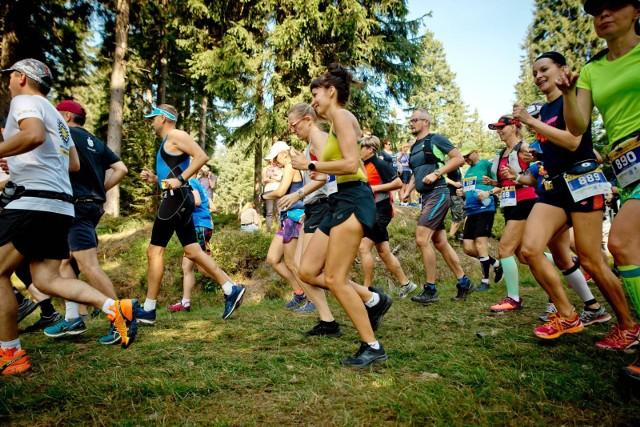 Zawody biegowe na Dolnym Śląsku, zdjęcie ilustracyjne