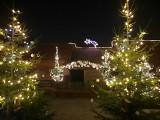 Żywa szopka bożonarodzeniowa w Bałtowie. Świetny pomysł na świąteczny spacer (ZDJĘCIA)