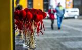 Walentynki 2018 w Poznaniu: Co robić 14 lutego? Sprawdź, jakie atrakcje czekają!
