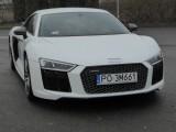 Audi R8 V10 plus. Trzecie auto w rodzinie