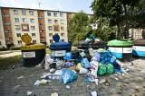 Śmieci w Koszalinie. Jak rozwiązać ten problem? [ZDJĘCIA]