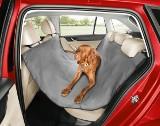 Jak bezpiecznie przewozić psa w samochodzie?
