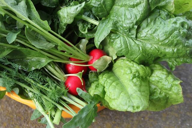 Już wkrótce na stoły trafią sezonowe warzywa. Sprawdź, czego nie możesz przegapić, zwłaszcza, że niektóre z nich pojawią się na krótko.