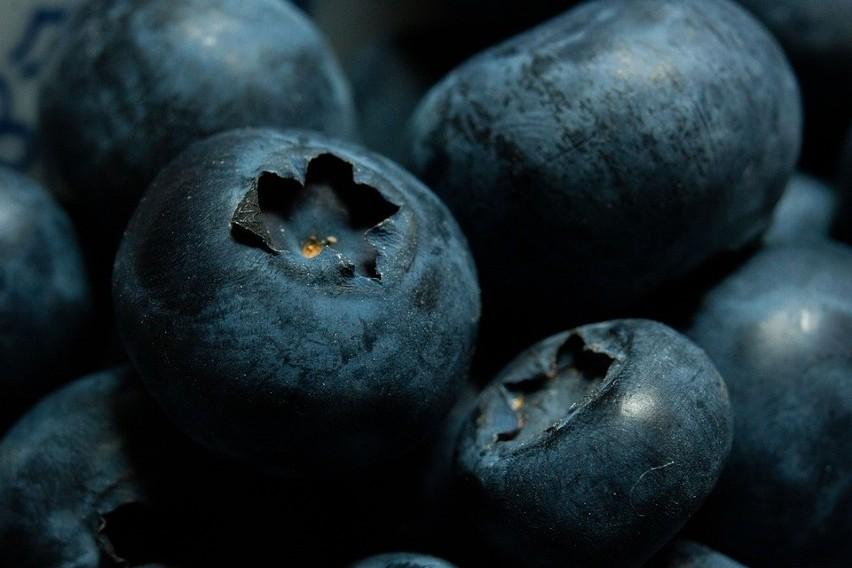 Zaczął się sezon na borówki. Miłośników tych owoców z...