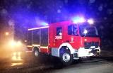 Zimna Zośka w kalendarzu. Pożary w ogrzewanych domach. Strażacy w akcji