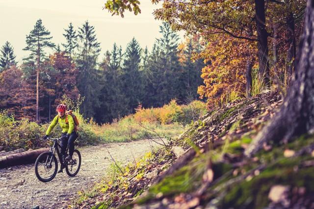 Jazda na rowerze niesie wiele korzyści dla zdrowia i sylwetki. Regularny trening na rowerze jest skuteczną formą odchudzania.