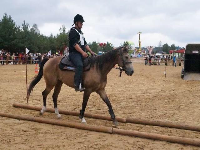 Miłośnicy jeździectwa turystycznego zmierzyli się ze sobą na torze w Gniazdowie.