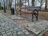 Zniszczona ławka i znikający bruk z parku dzikowskiego w Tarnobrzegu. Ktoś kradnie kostkę granitową? (ZDJĘCIA)