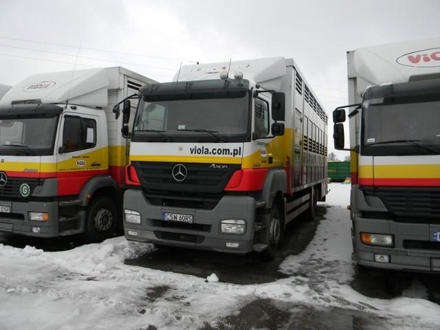 """Zakłady mięsne """"Viola"""" w Lnianie wystawiły do sprzedaży ponad 20 pojazdów."""