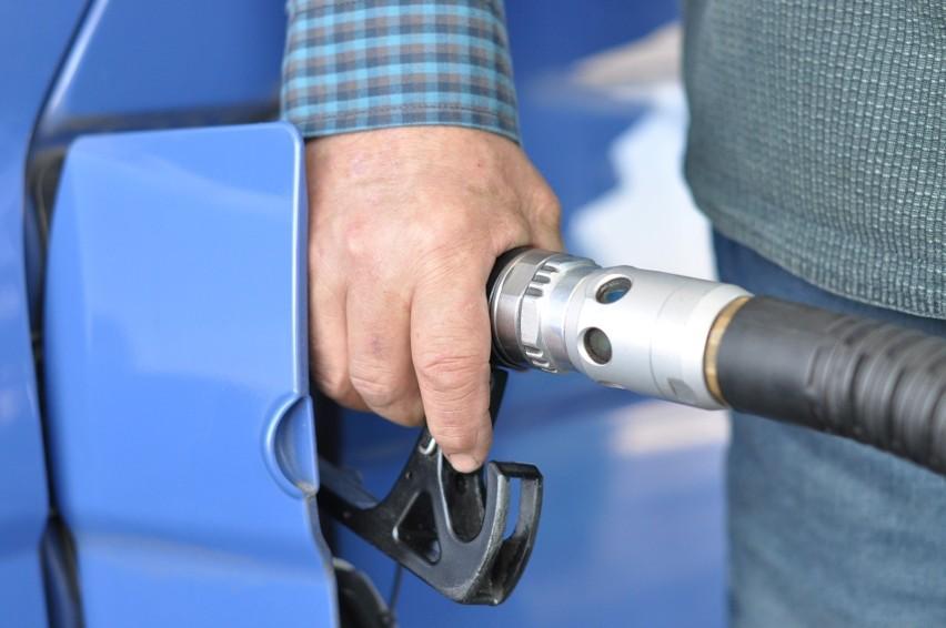 Ceny na miejskiej stacji paliw mają być o kilkanaście, a...