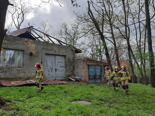 W niedzielę, 2 maja po południu strażacy z Tarnobrzega zostali zadysponowani do Parku Dzikowskiego, gdzie wichura zerwała fragment dachu na jednym z budynków wchodzących w skład dawnego kompleksu dworskiego. Do zdarzenia doszło w budynku nieopodal siedziby Centrum Natura 2000. Na miejscu strażacy odgrodzili teren taśmą, żeby postronne osoby tam nie podchodziły, ponieważ leciwa i zniszczona konstrukcja dachu mogła runąć w każdej chwili. Sami sprawdzili obiekt pod kątem bezpieczeństwa. W niedzielę od południa w Tarnobrzegu i okolicy odczuwalne są momentalnie silne podmuchy wiatr, strażacy wzywani byli już na interwencje związane z usuwaniem odłamanych konarów drzew i do powalonych drzew. Zobaczcie interwencję w Parku Dzikowskim na kolejnych slajdach.PRZESUŃ GESTEM LUB STRZAŁKĄ >>>