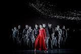 """Bytom: """"Sól ziemi czarnej"""" - premiera baletowa w Operze Śląskiej [RECENZJA]"""