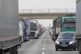 Nowe kary dla nietrzeźwych kierowców? I więcej kontroli trzeźwości na drogach.  Nie tylko w związku ze sprawą Kamila Durczoka