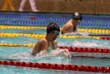 Arena Grand Prix Polski. Nasi pływacy walczą o olimpijskie kwalifikacje