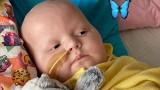 Mała Hania z Kielc walczy o życie. Dramatyczne wieści z USA i apel rodziców dziewczynki
