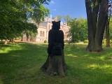 Park w Przytoku zaskakuje. Sprawdź, co jest w nim niezwykłego