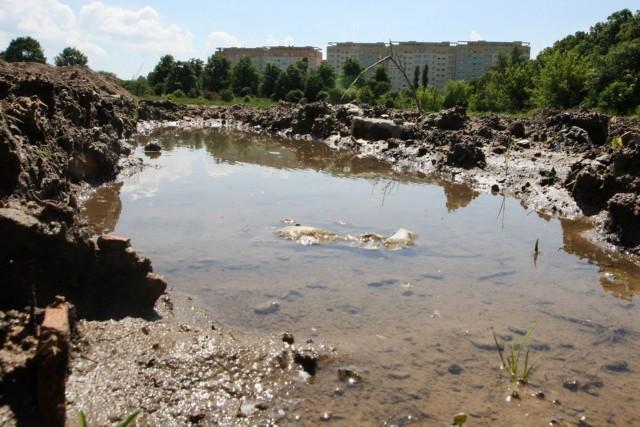 Koszt budowy aquaparku na tym terenie to ponad 200 milionów złotych. W budżecie Szczecina takich pieniędzy nie ma.