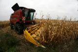 Urzędnicy zachęcają rolników do spisania historii własnego gospodarstwa. Oferują cenne nagrody