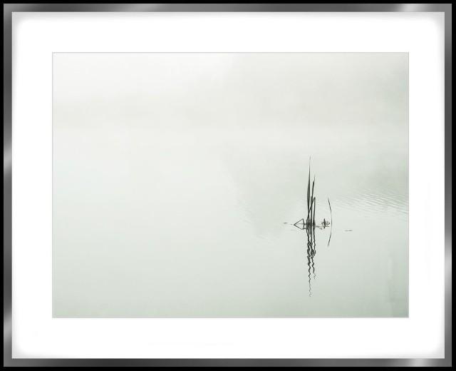 https://allegro.pl/oferta/fotografia-ramka-alu-40x50cm-autor-pawel-bocko-9136586088