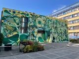 Nowy mural we Wrocławiu o wielu zastosowaniach [ZDJĘCIA, FILM]