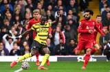 Liverpool zabawił się w Premier League. Szerszenie rozbite przez The Reds