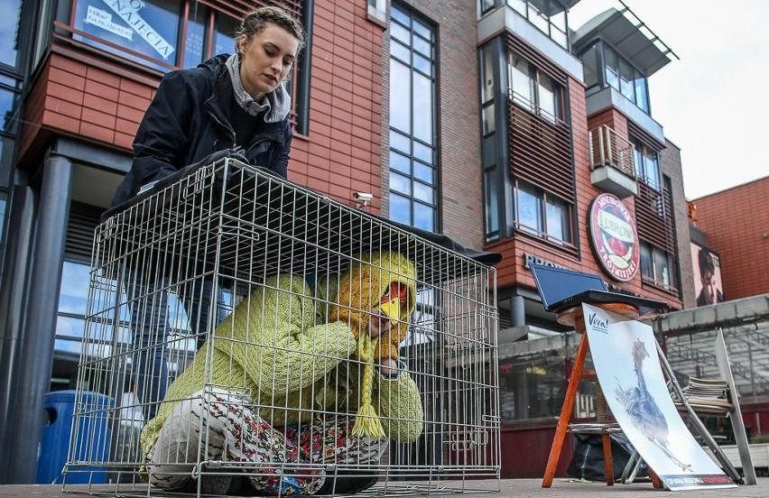 """Akcja """"W te święta poprę zwierzęta"""" w Gdańsku [ZDJĘCIA]"""