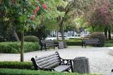 Park z fontanną w Słubicach jest jeszcze piękniejszy. Zakwitły kasztany i... pojawiły się nowe ławki!