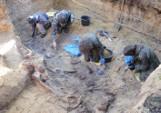 Kopna Góra. Odkryto szczątki ponad dwudziestu powstańców listopadowych.