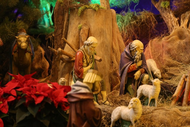 W Archikatedrze Chrystusa Króla w Katowicach wybudowano piękną szopkę bożonarodzeniową