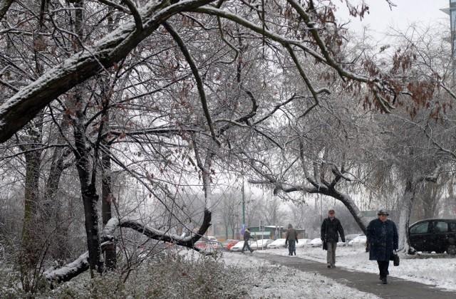 Prognoza pogody długoterminowa na zimę.