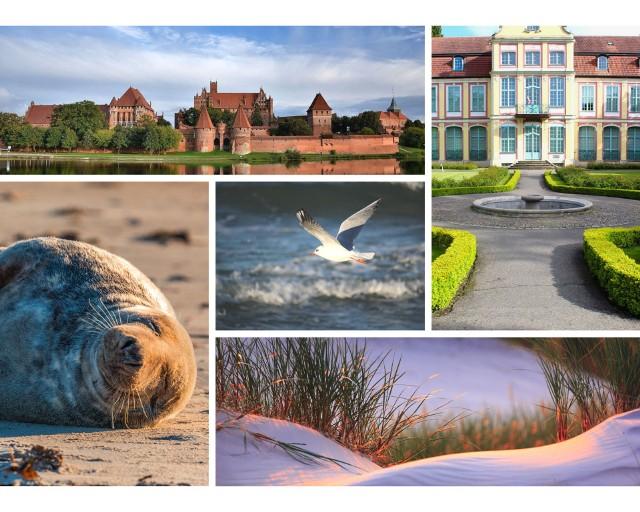 Google opublikował listę najczęściej wyszukiwanych atrakcji turystycznych na Pomorzu. Które obiekty cieszą się szczególnym zainteresowaniem? Sprawdź!