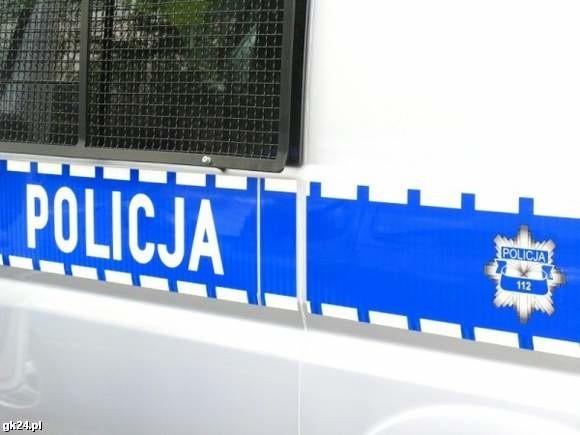 Szczecin. Policjanci złapali złodzieja zabawek.