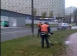 Trwa ostatnie koszenie trawy przed zimą w Kielcach. Mieszkańcy zaskoczeni?