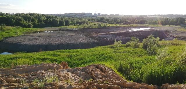 Dawna kopalnia iłów w Zesławicach i okoliczne tereny