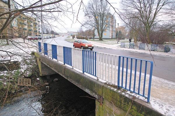 Tak mają wyglądać tawerna i pomosty, które chce nad Trzesieckiem zbudować Mariusz Zalewski.